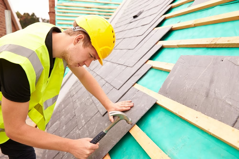 Roof thatcher assistant (trainee)