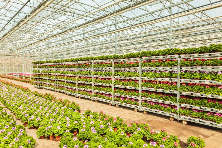 Žemės ūkio darbuotojai