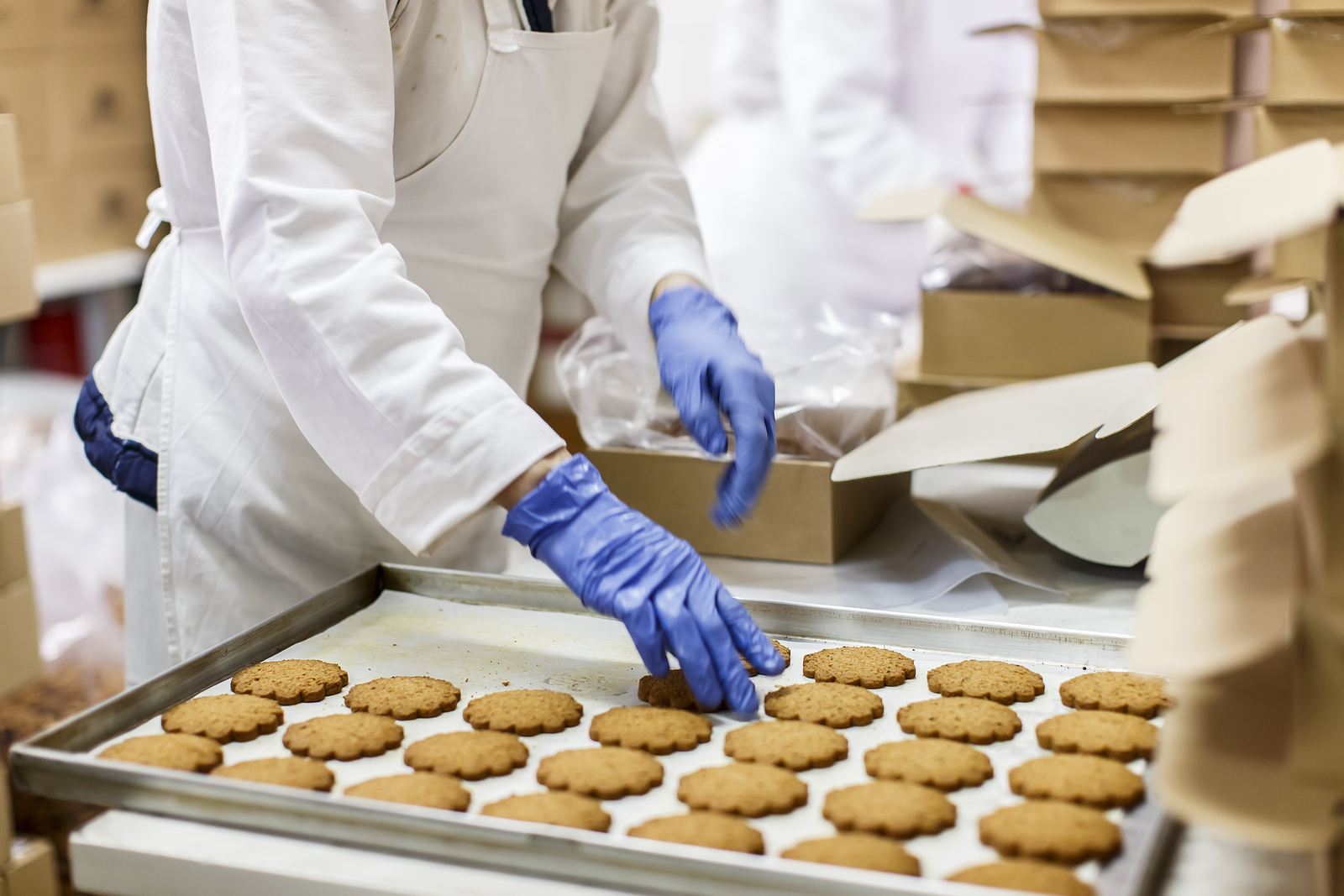 Production worker (cookie factory)